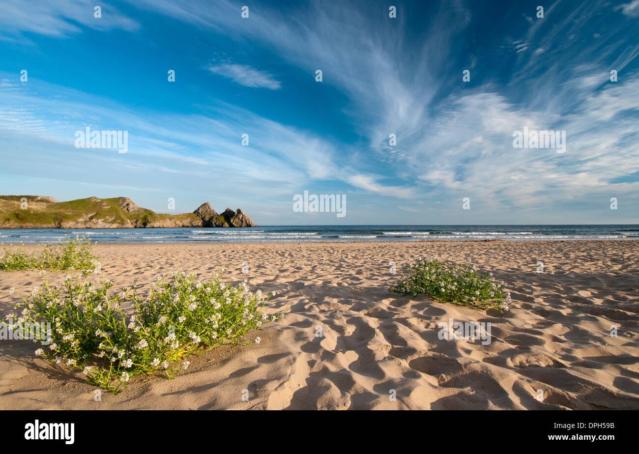 Three Cliffs Bay, Gower. Stock Photo