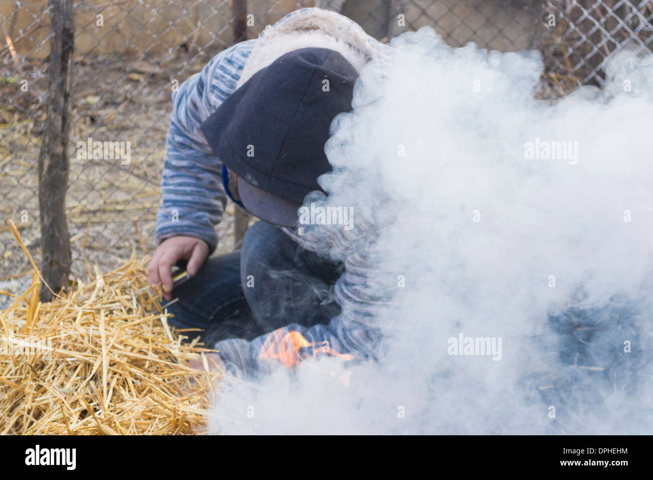 Traditional way of killing a pig in rural Romania - Grain straws covering a slaughtered pig are set on fire by a young man - Stock Image