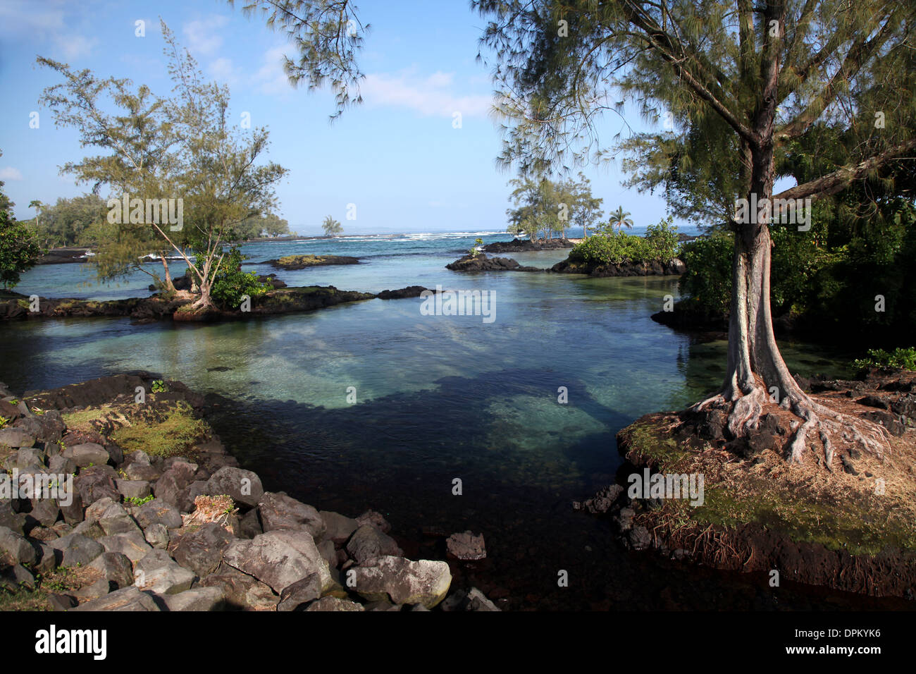 A good swimming spot in the suburbs of Hilo where turtles come into the fresh water to rid themselves of marine parasites - Stock Image