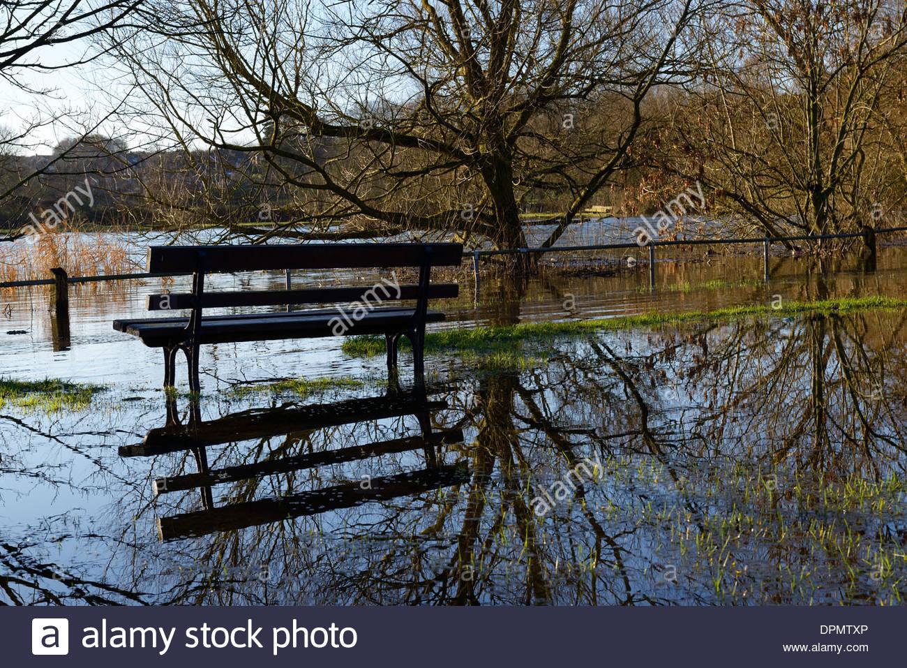 River Avon floods Churchill Gardens, Salisbury, Wiltshire, England, UK Stock Photo