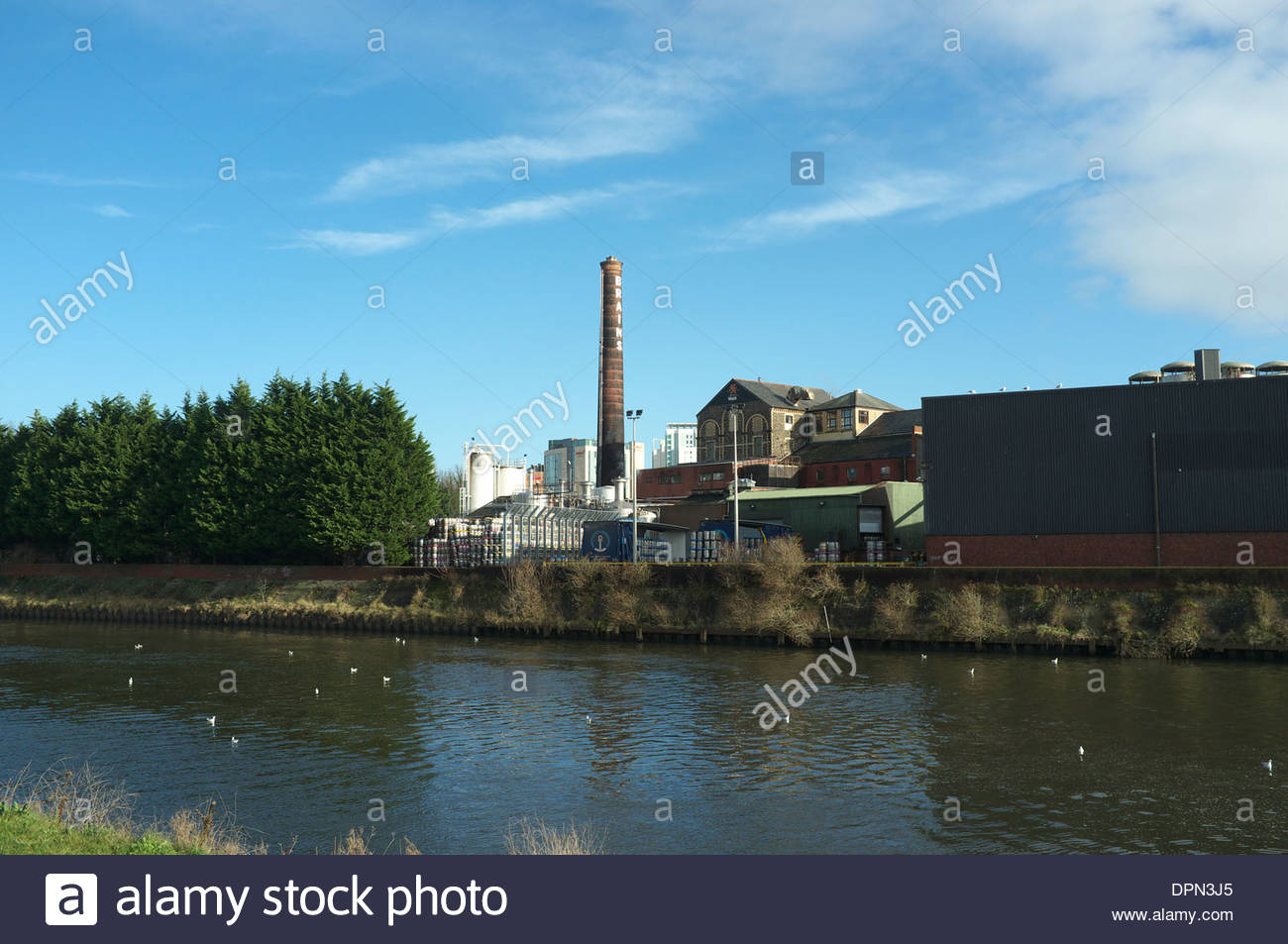 Brains, the factory premises of the Cardiff brewery, with the River Taff visible in the foreground. Cardiff, Wales, UK. - Stock Image
