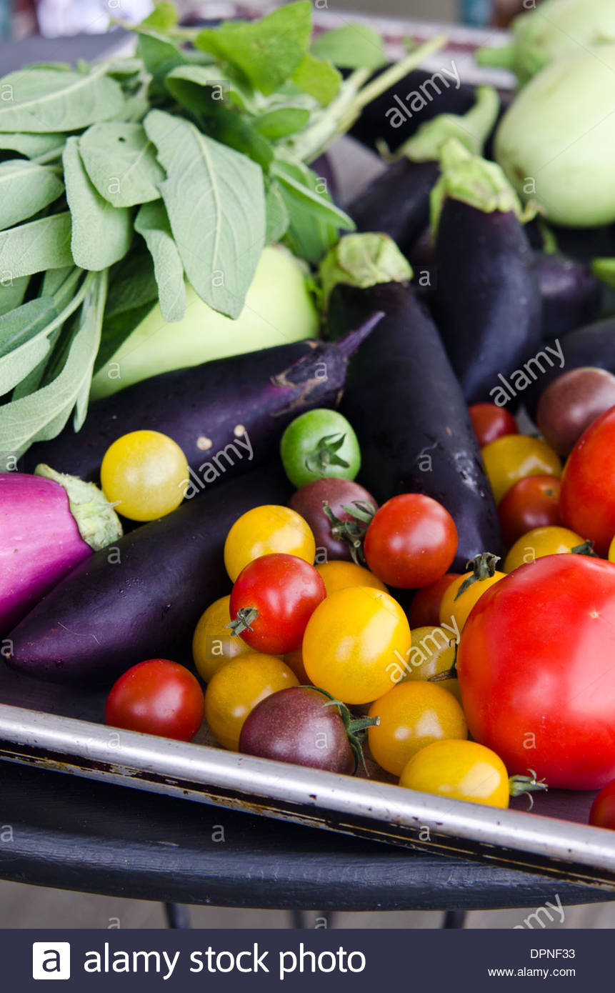 Summer vegetables from farmer's market including white, purple and Chinese eggplant, tomatoes, cherry tomatoes - Stock Image