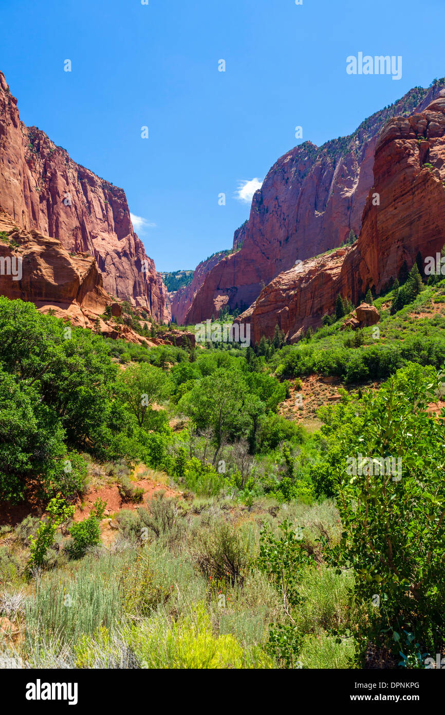 View from East Kolob Canyon Road in the Kolob Canyons section of Zion National Park, Utah, USA - Stock Image