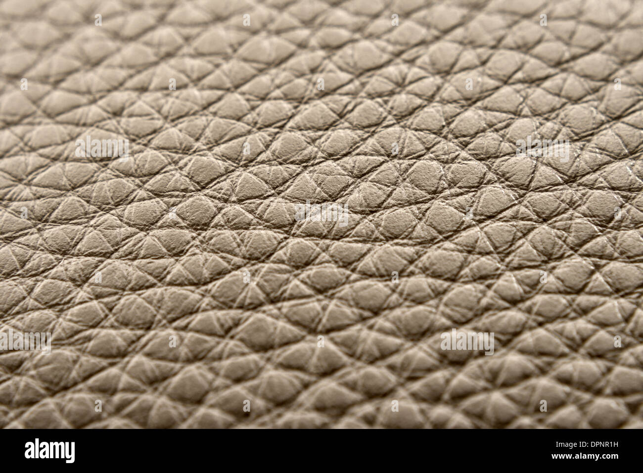 animal skin, backgrounds, leather, textured, dark, macro, empty, material, no people, pattern, textile, blank, bumpy, close-up, - Stock Image