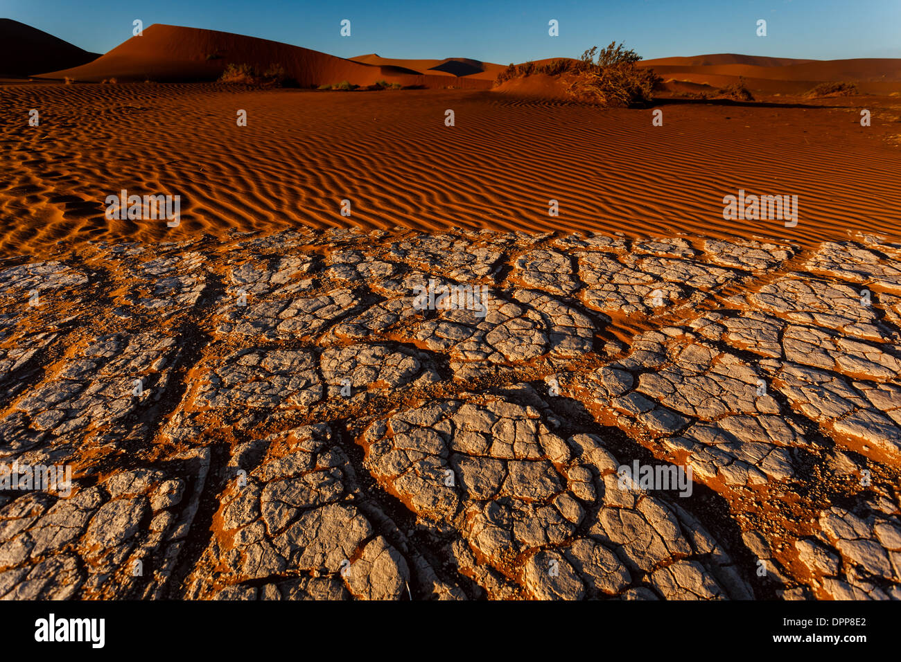 Two patterns side by side, dry cracked mud and windblown rippled red sand on sunbaked oasis river bed in Namibia. - Stock Image