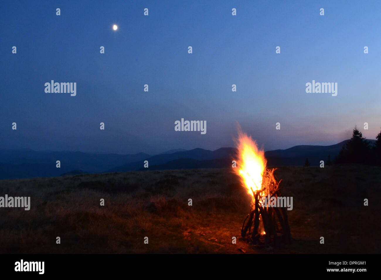 stick tree bonfire night orange grass campfire light smoke moon vesper sparks flame wood forest color outdoors sunset firewood v - Stock Image