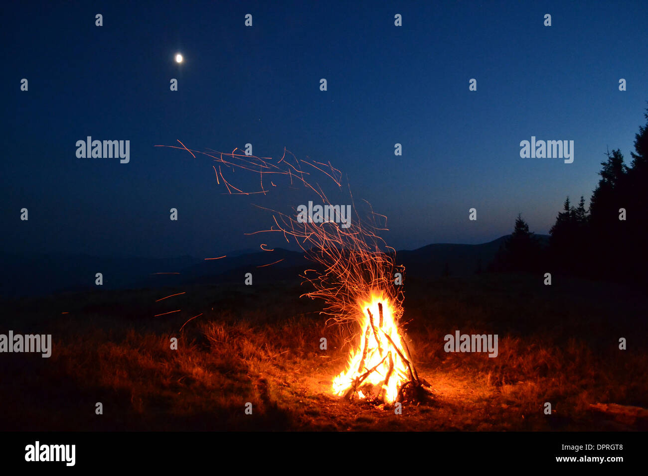 stick tree bonfire night orange grass campfire light smoke moon vesper sparks flame wood forest color outdoors sunset firewood - Stock Image