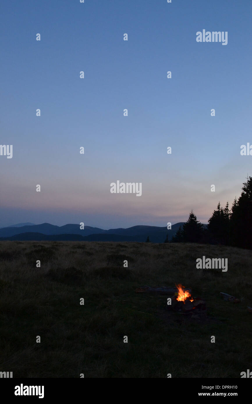 vertical shot stick tree bonfire night orange grass campfire light smoke moon vesper sparks flame wood forest color outdoors sun - Stock Image