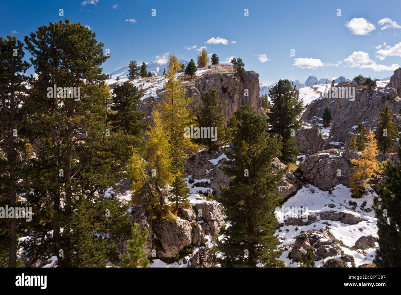 The Stone City or Citta dei Sassi, dolomitic rocks, in autumn; Dolomites, north Italy. - Stock Image