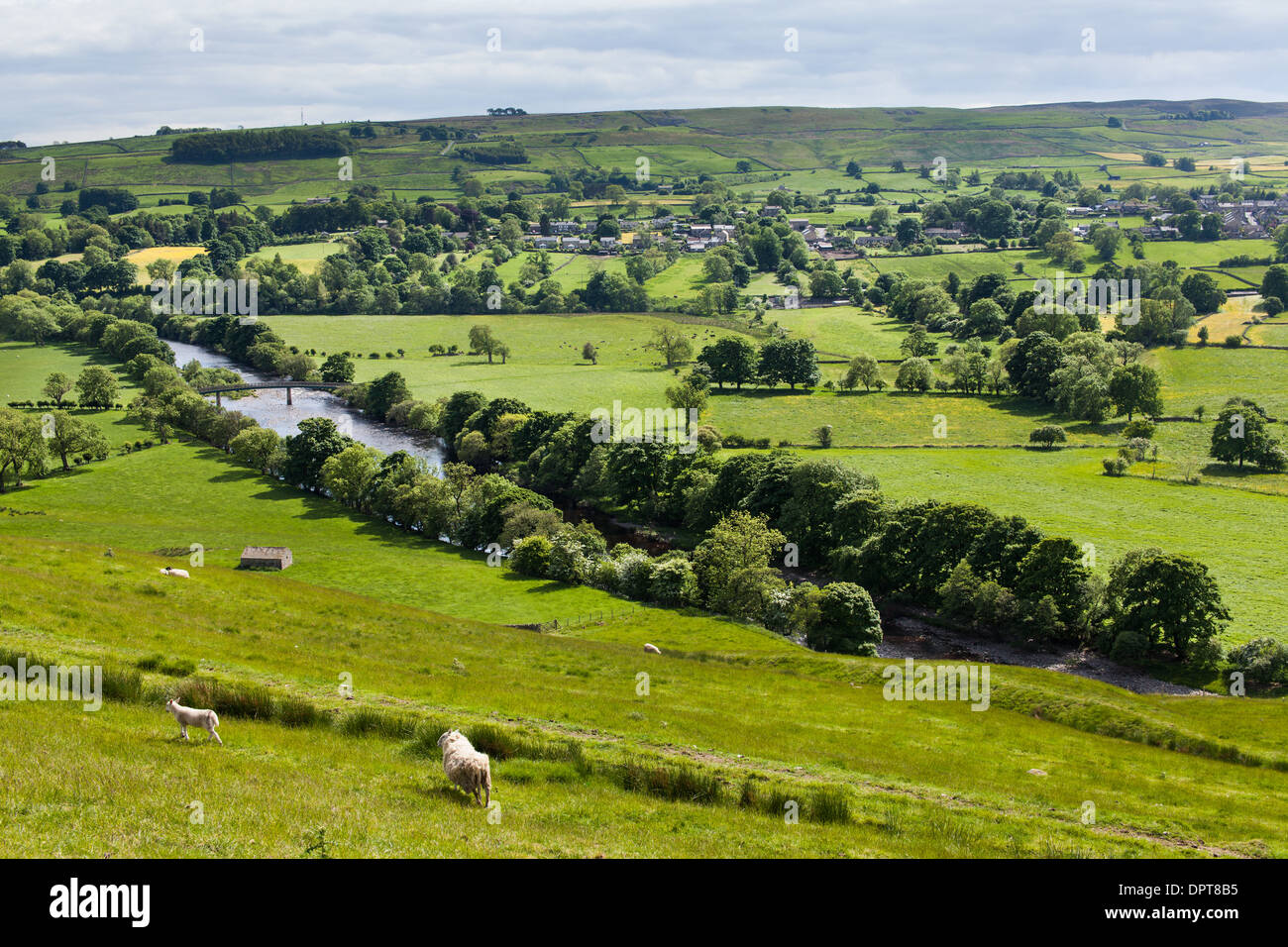 River Tees and Meadows, Upper Teesdale, England - Stock Image