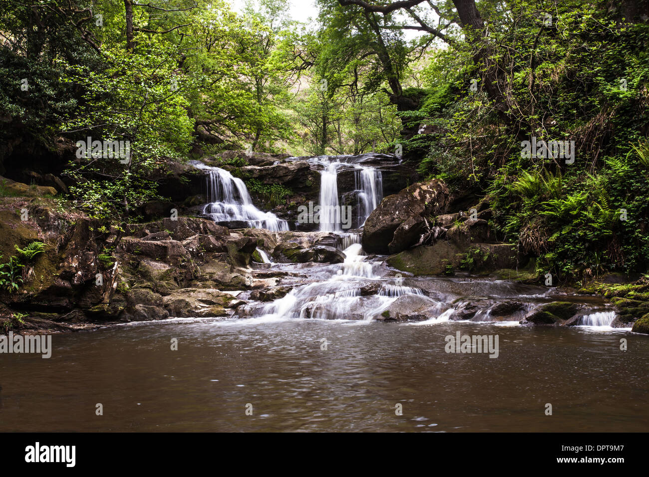 Water Ark Foss, Murk Esk, Beck Hole, North Yorkshire, England - Stock Image