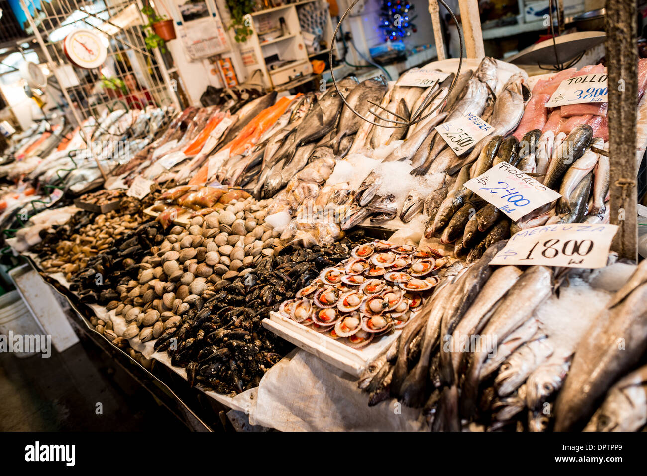 SANTIAGO, Chile - Fresh fish and seafood for sale at Mercado