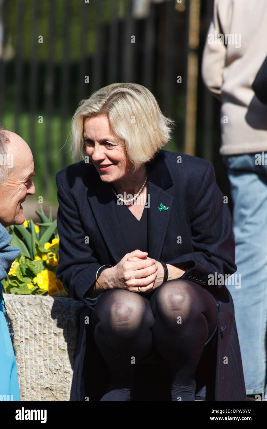 Tessa Munt,MP for Wells, UK Member of Parliament, Liberal Democrat - Stock Image