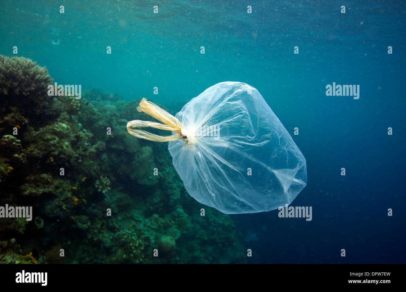 Plastic bags and other hazardous garbage floating underwater over coral reef in Bunaken National Park, north Sulawesi - Stock Image