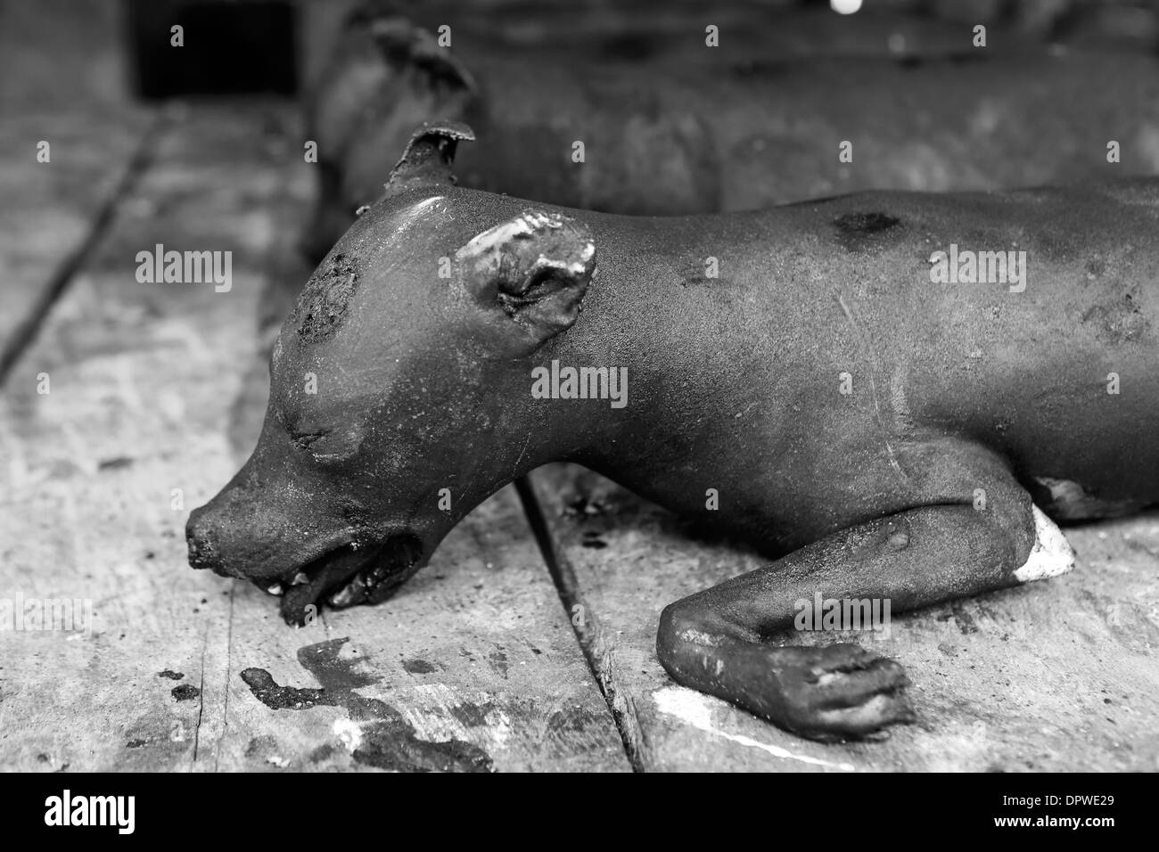 Dead dogs for sale at Tomohon market, north Sulawesi, where dog meat is considered a delicacy - Stock Image