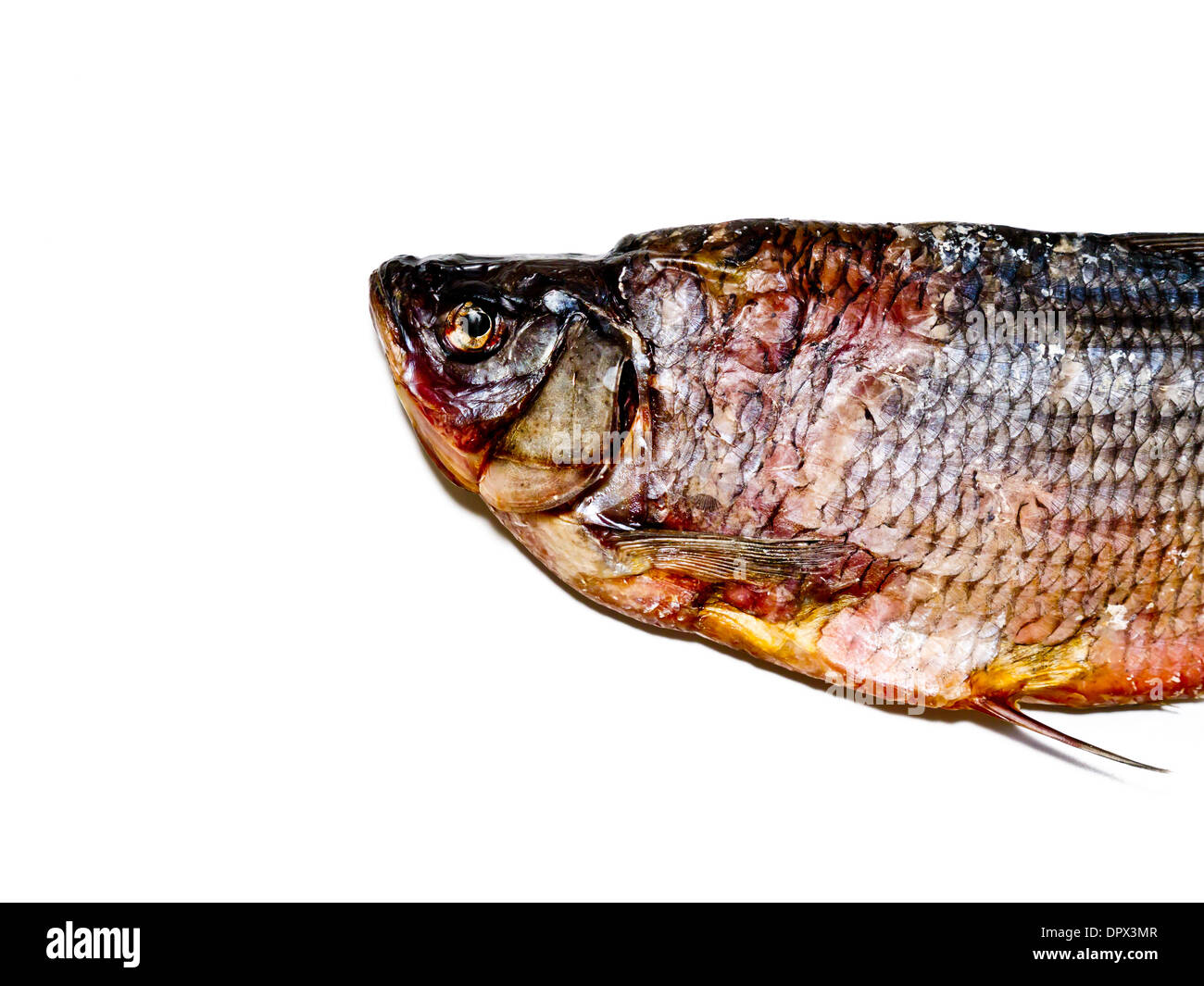 Dried fish. - Stock Image