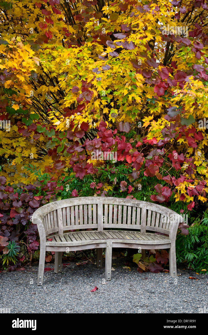 WASHINGTON - Bench at the edge of the Perennial Border Garden area ...