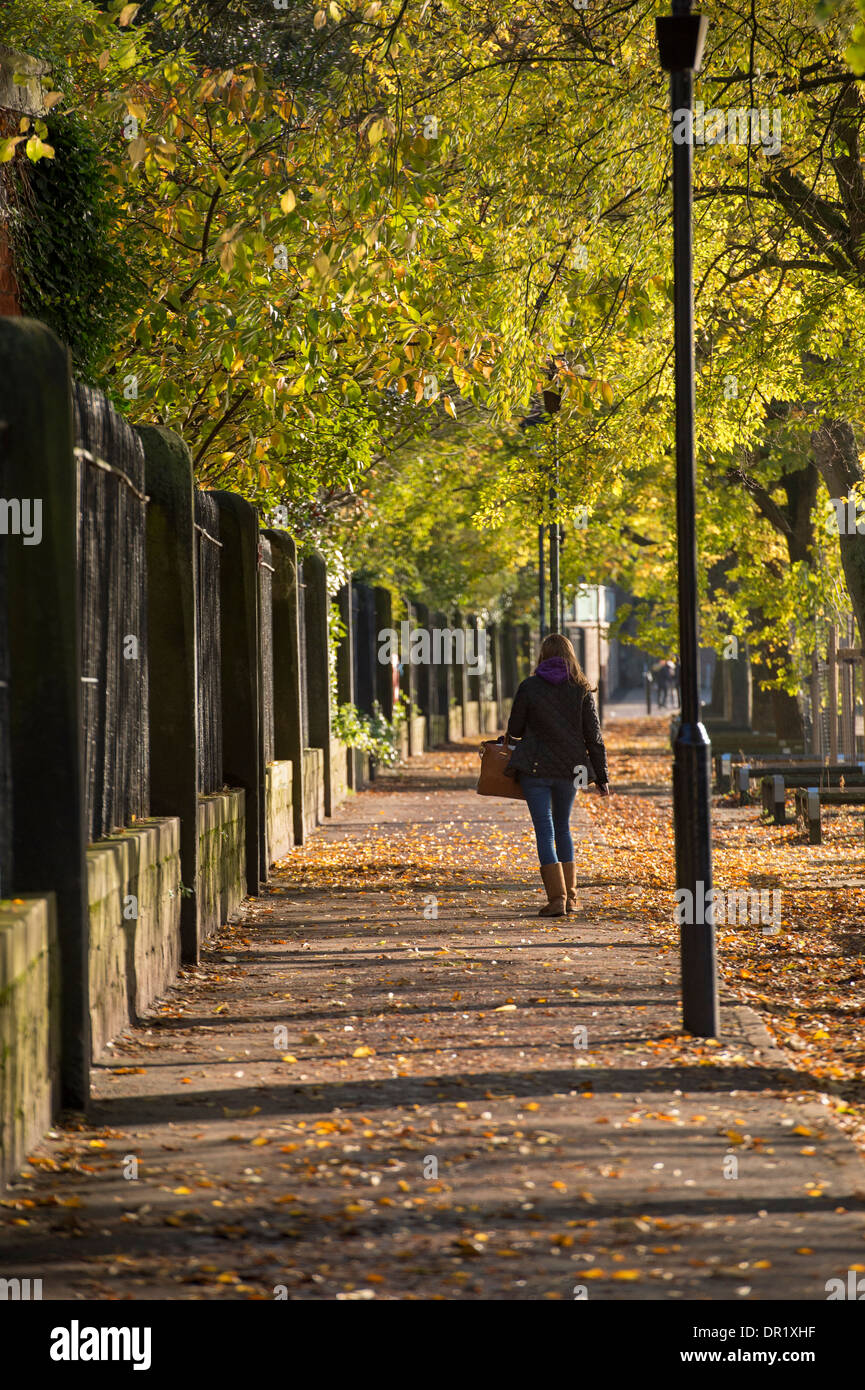 1 young woman walking alone, along a quiet, scenic, tree-lined footpath on a sunny day in early autumn - Dame Judi Stock Photo