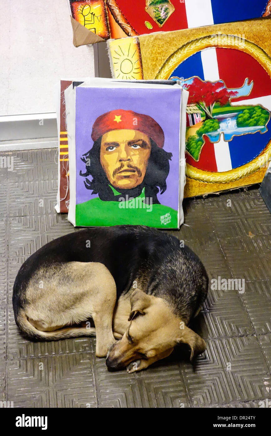 sleeping dog in front of paintings on El Conde Street shopping district; Zona Colonial; Santo Domingo; Dominican Republic - Stock Image