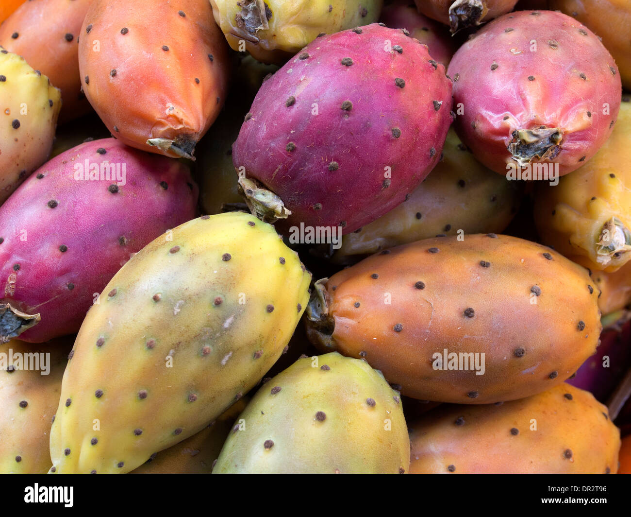 a close-up of prickly-pear fruits on an Italian greengrocer's stall - Stock Image