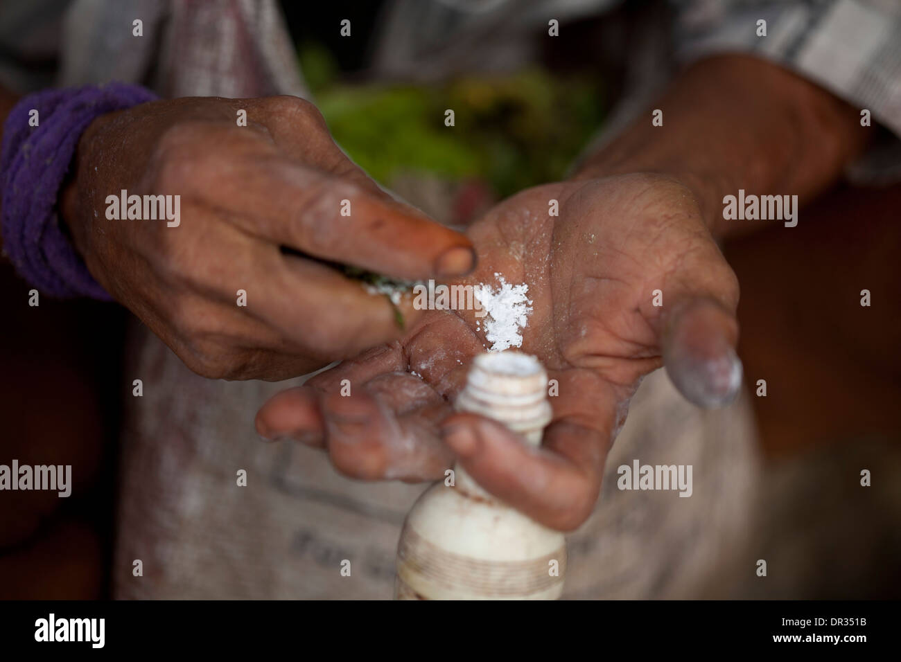 A Hanunoo Mangyan man drops a pinch of slaked lime, or calcium hydroxide, into his hand while preparing his betel chew, nga nga. - Stock Image