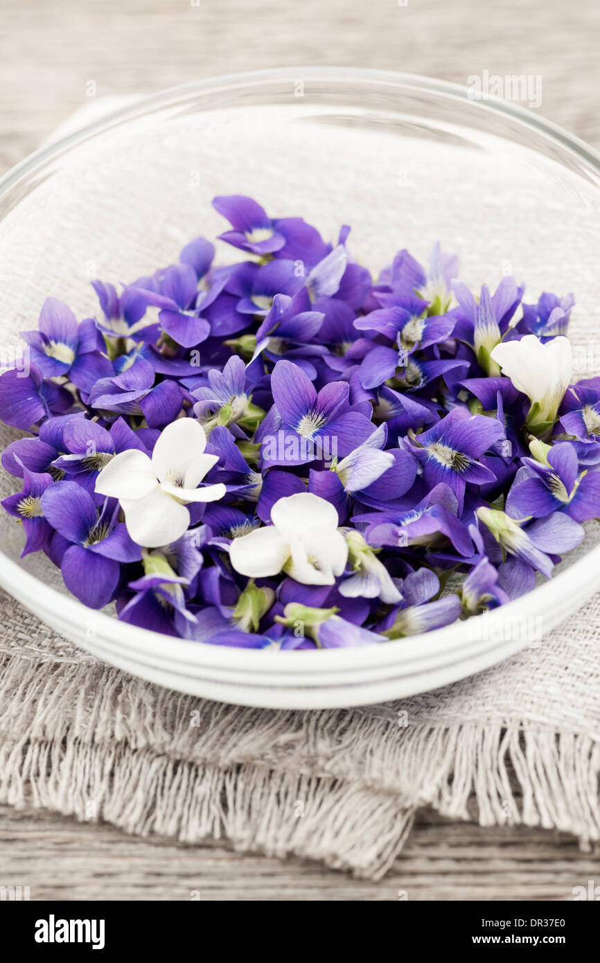 Edible Herbs Flowers In Bowl Stock Photos Edible Herbs Flowers In