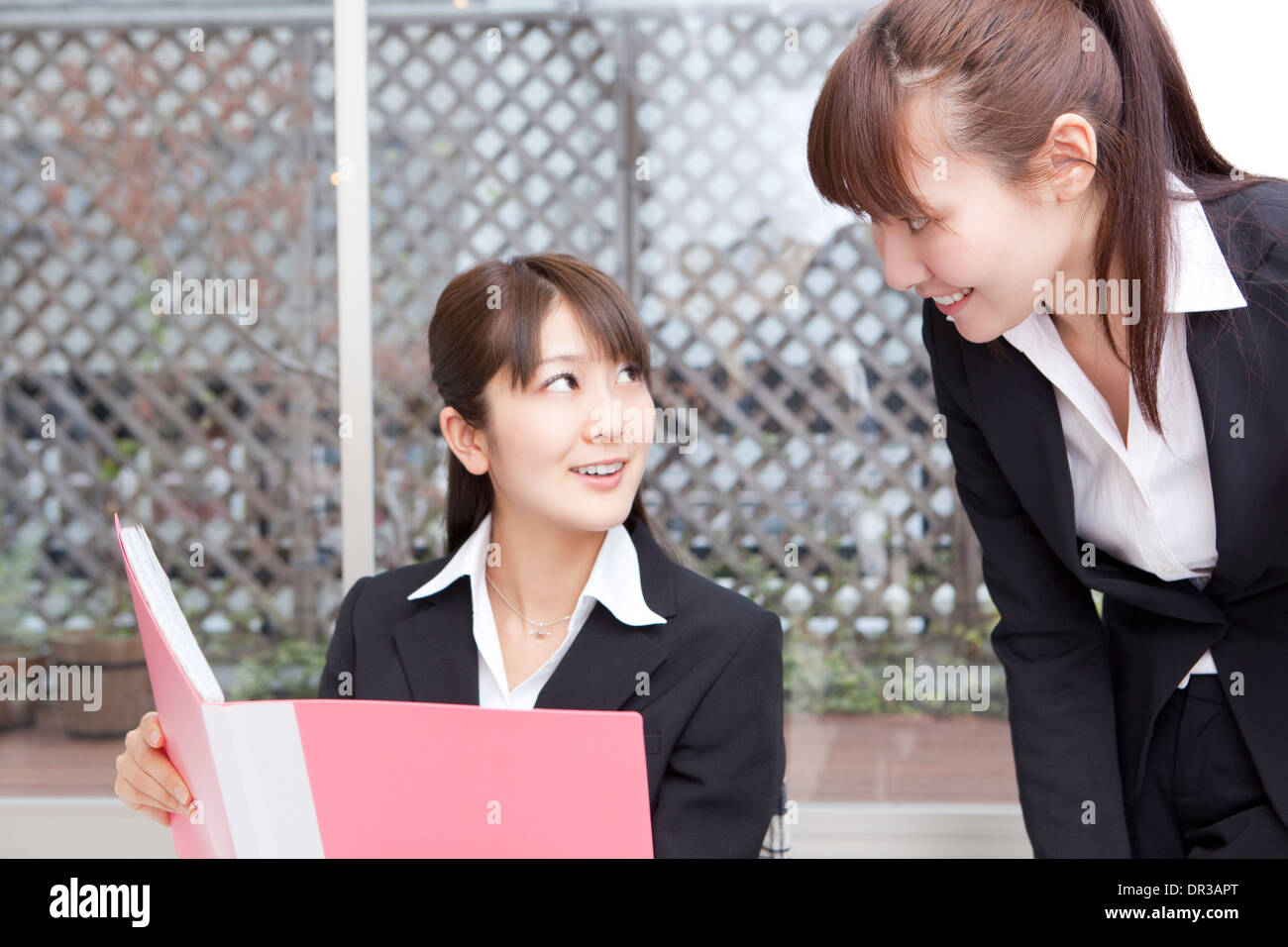Two young women looking at file - Stock Image