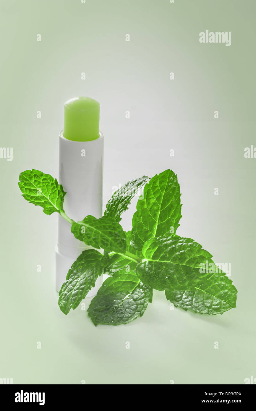 Hygienic lipstick with mint leaves - Stock Image