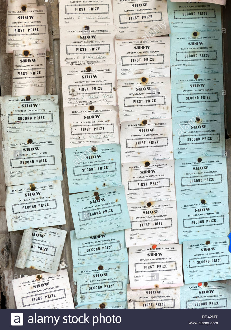 Old prize winning cards from Ticknall Village Hall Shows pinned on noticeboard in gardener's bothy, Calke Abbey, Ticknall. - Stock Image