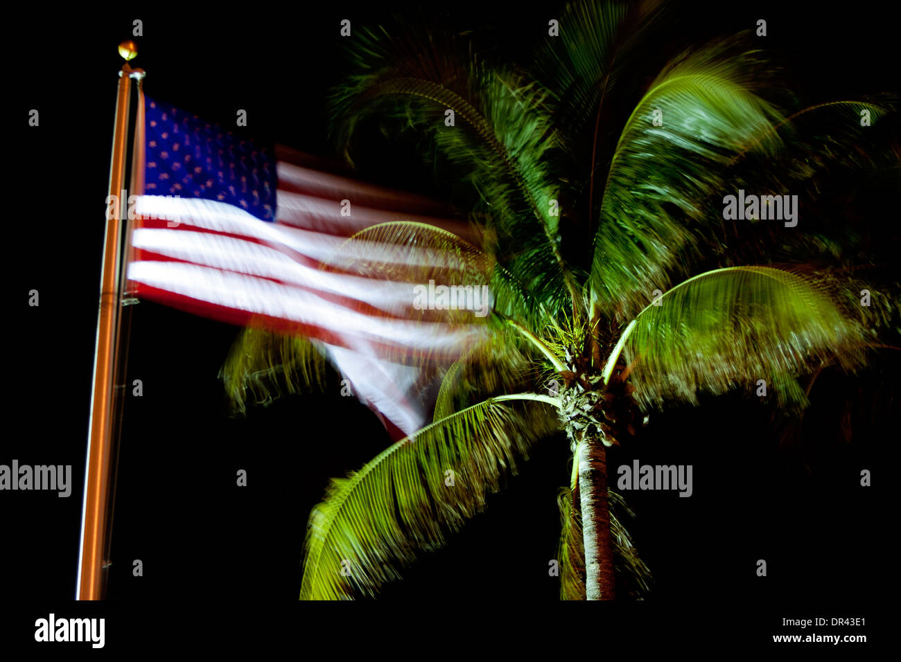 Motion Blur of American Flag and Palm Tree - Pompano Beach, Florida USA - Stock Image