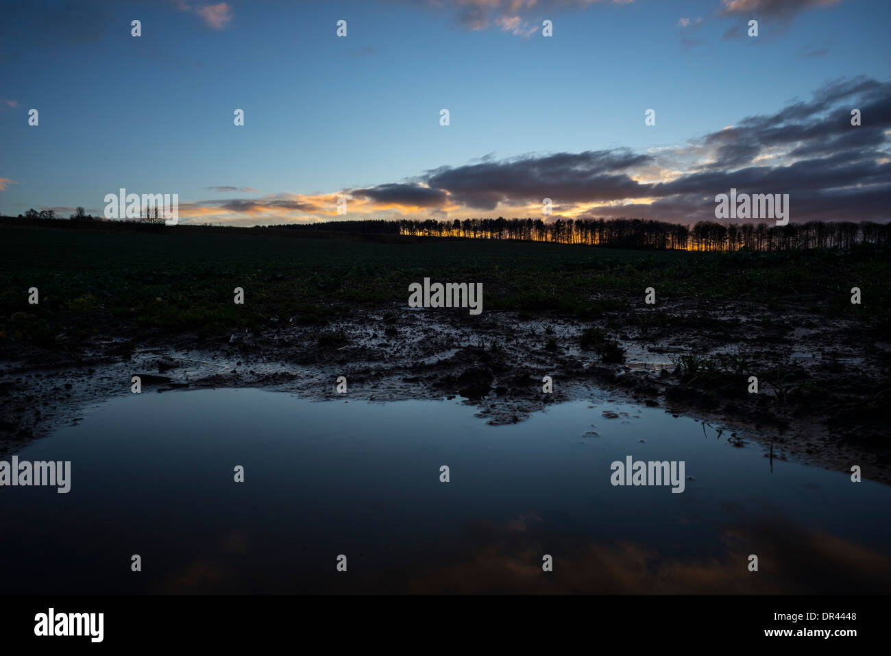 Waterlogged field in the Scottish Borders in January, high rainfall, runoff and road flooding, soil loss. - Stock Image