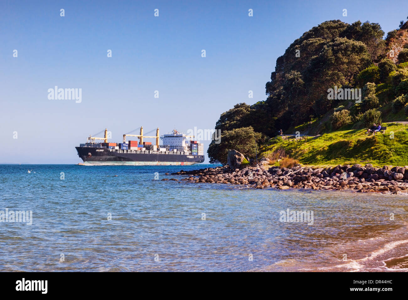 Container ship Calidris rounding the point at Mount Maunganui, as it makes its way into Tauranga Port. - Stock Image