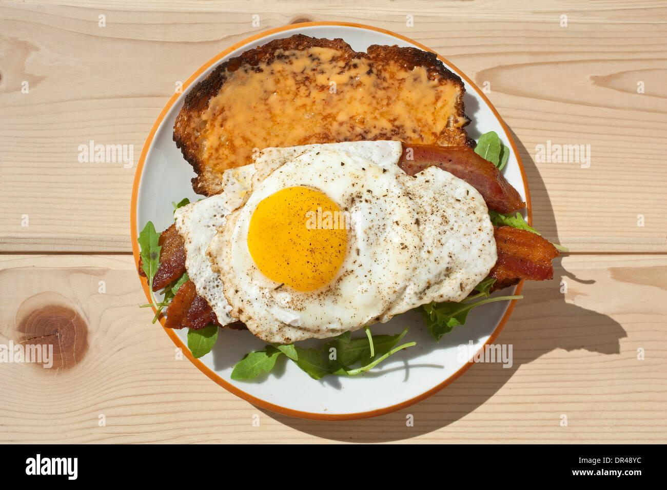 Egg breakfast sandwich Stock Photo