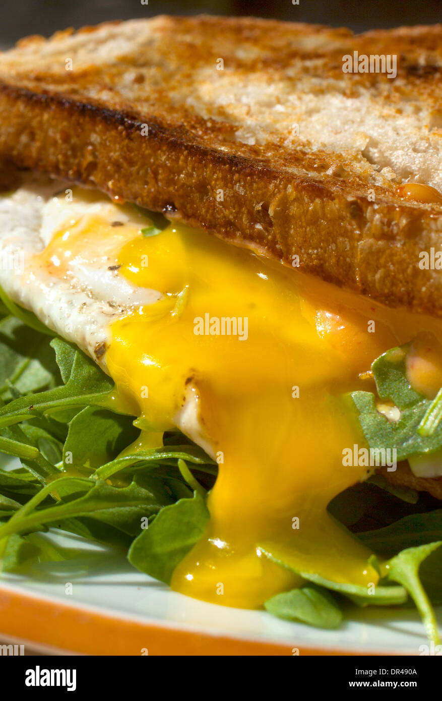 Runny egg breakfast sandwich - Stock Image