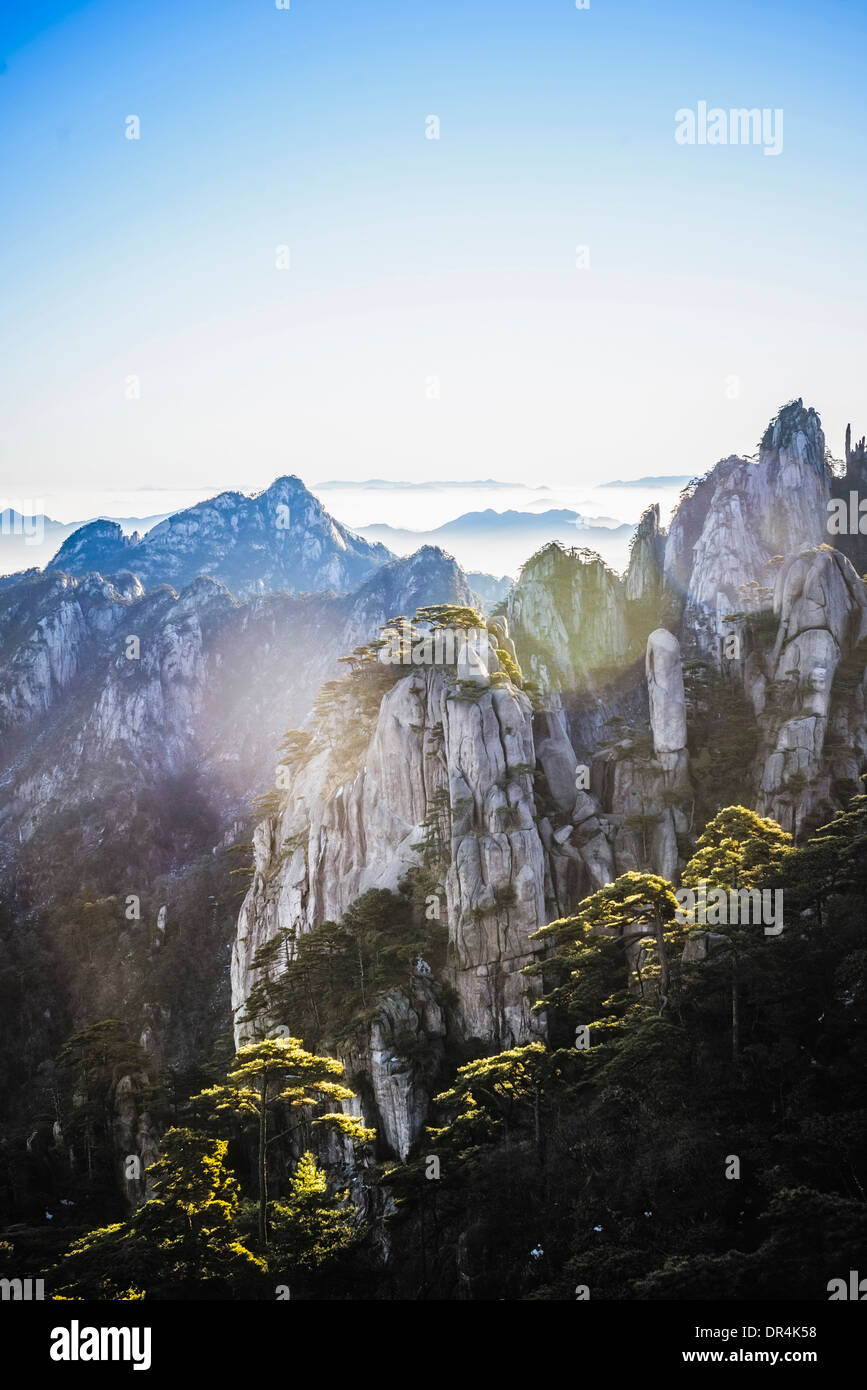 Trees growing on rocky mountains, Huangshan, Anhui, China Stock Photo