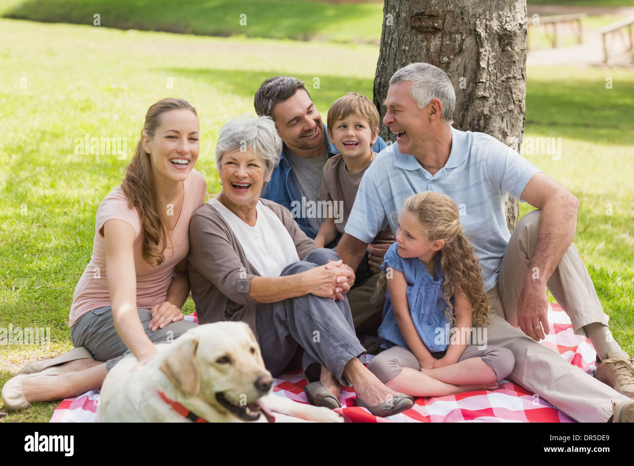 Extended family with their pet dog at park - Stock Image