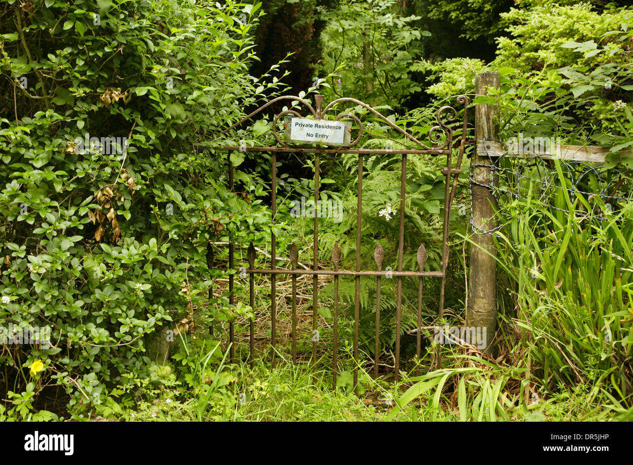 No Entry Sign On Old Wrought Iron Front Gate Of Very Overgrown Garden.    Stock