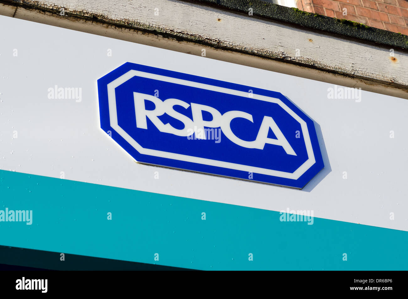 RSPCA charity shop sign - Stock Image