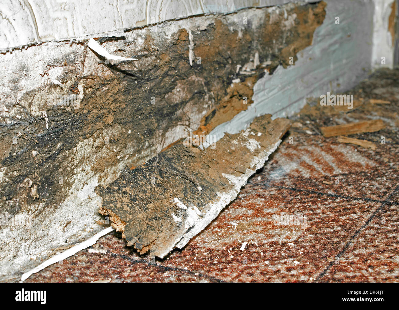 dry rot in a  home - Stock Image