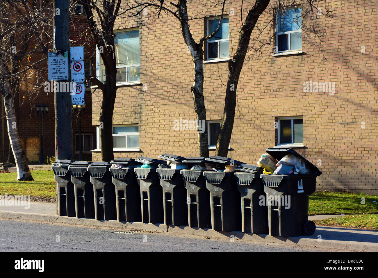 Garbage containers ready for pickup in Toronto, Canada - Stock Image