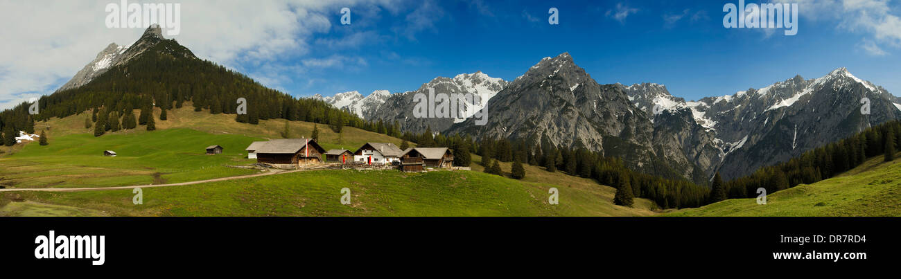 Walder Alm alpine pasture, with Vomper Chain at the rear, Karwendel Mountains, Tyrol, Austria, Europe - Stock Image