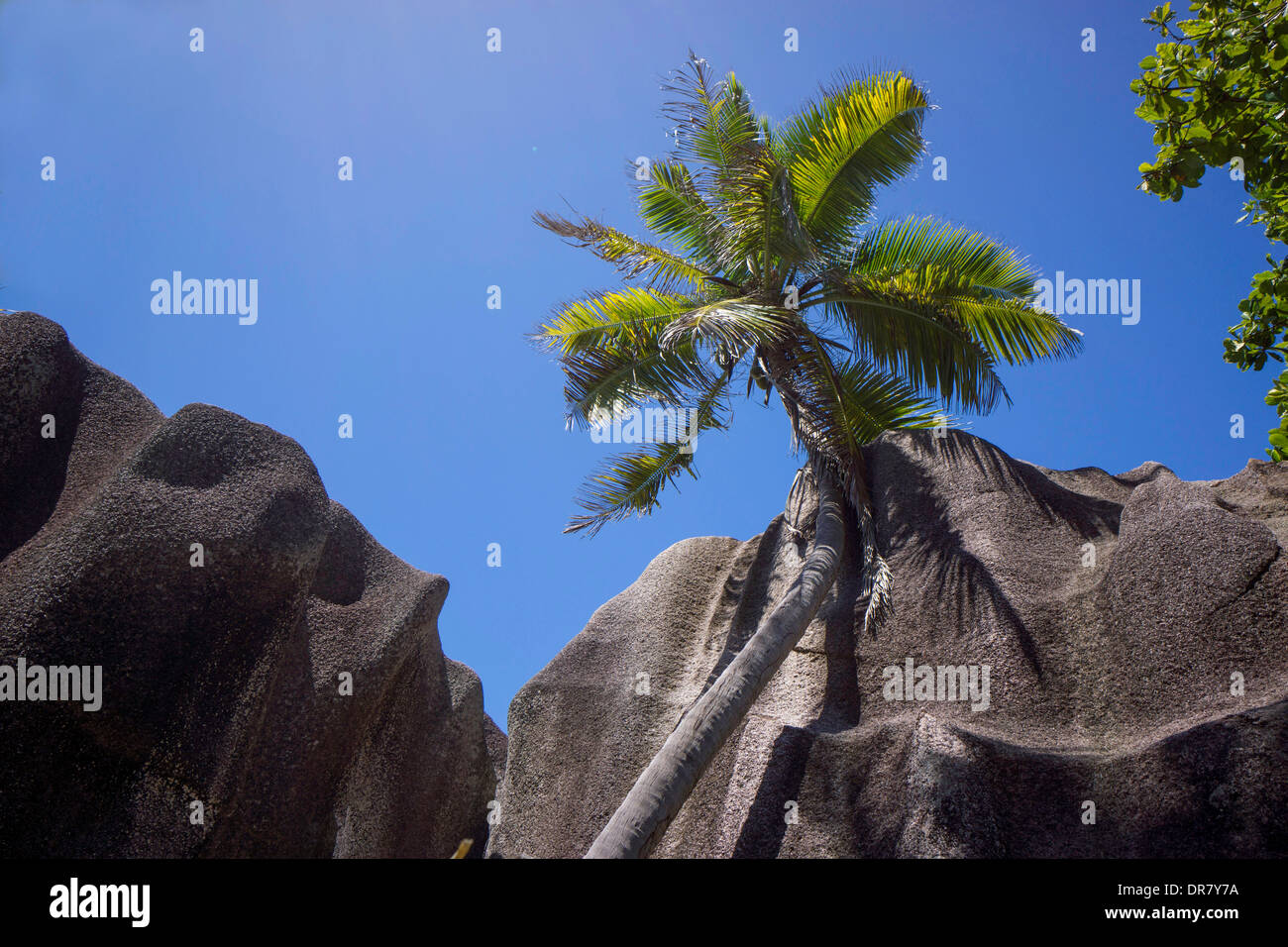 Typical rock formations in the Seychelles, Anse Union, La Digue, Seychelles - Stock Image