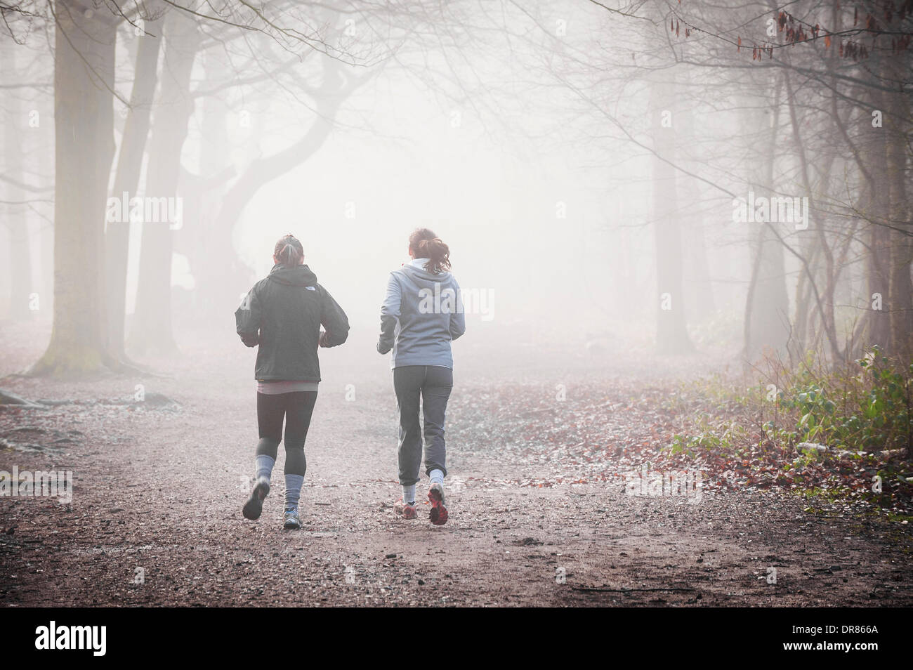 Brentwood, Essex, UK. January 21st 2014  Two girls running through the thick fog shrouding the Essex countryside.  Photographer: Gordon Scammell/Alamy Live News - Stock Image