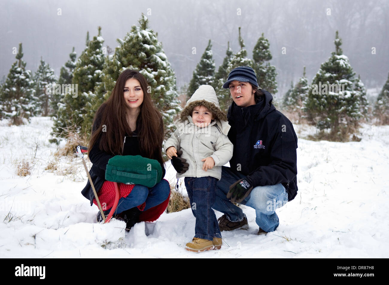 Young Family at a You Cut Christmas Tree Farm in Suthern Indiana - Stock Image