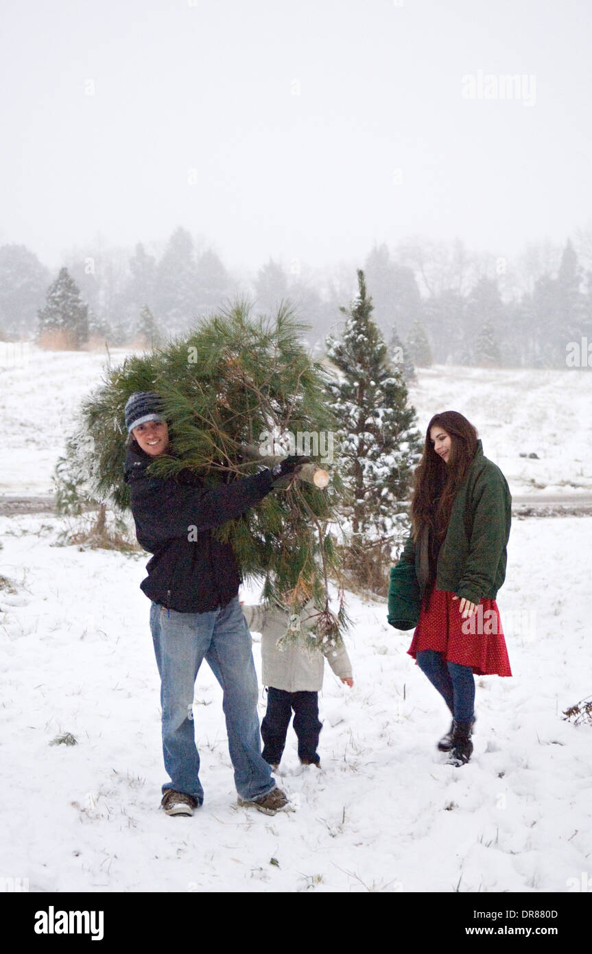 Young Family with their Fresh Cut Christmas Tree on a You Cut Christmas Tree Farm in Southern Indiana - Stock Image