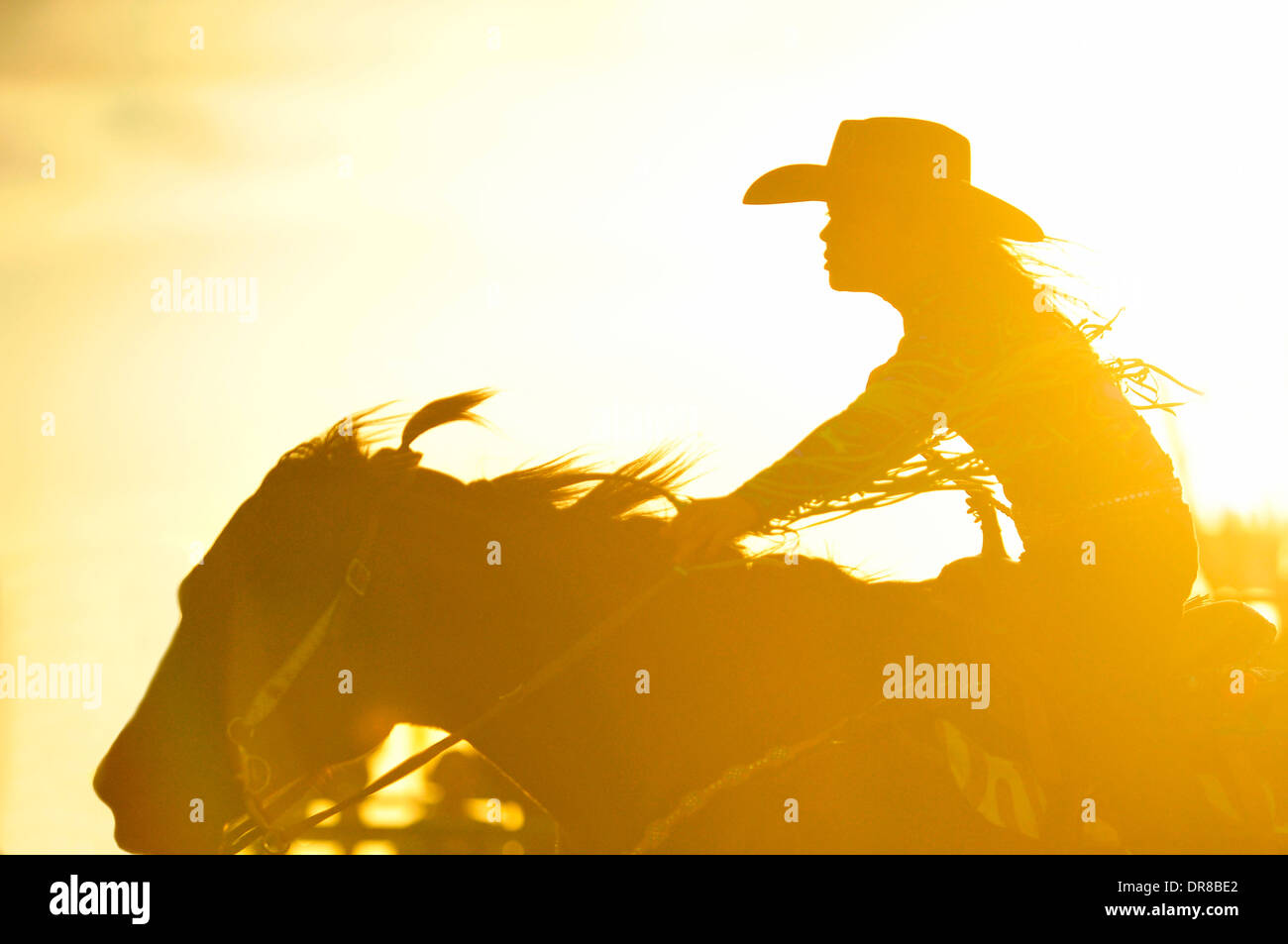 A close up image of a female barrel racer - Stock Image