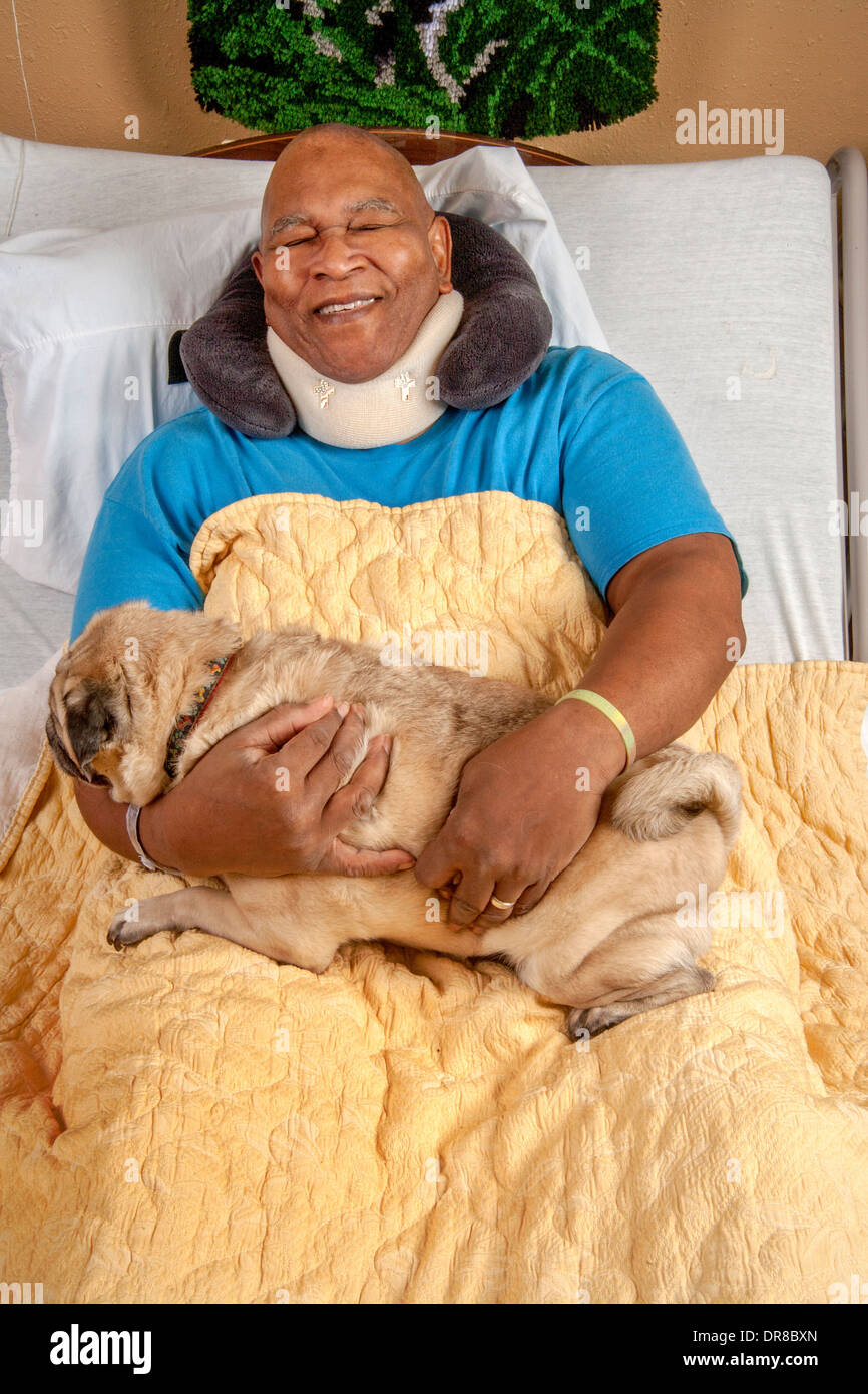 An African American hospital patient in Southern California hugs a Pug comfort dog brought by a volunteer. MODEL RELEASE - Stock Image