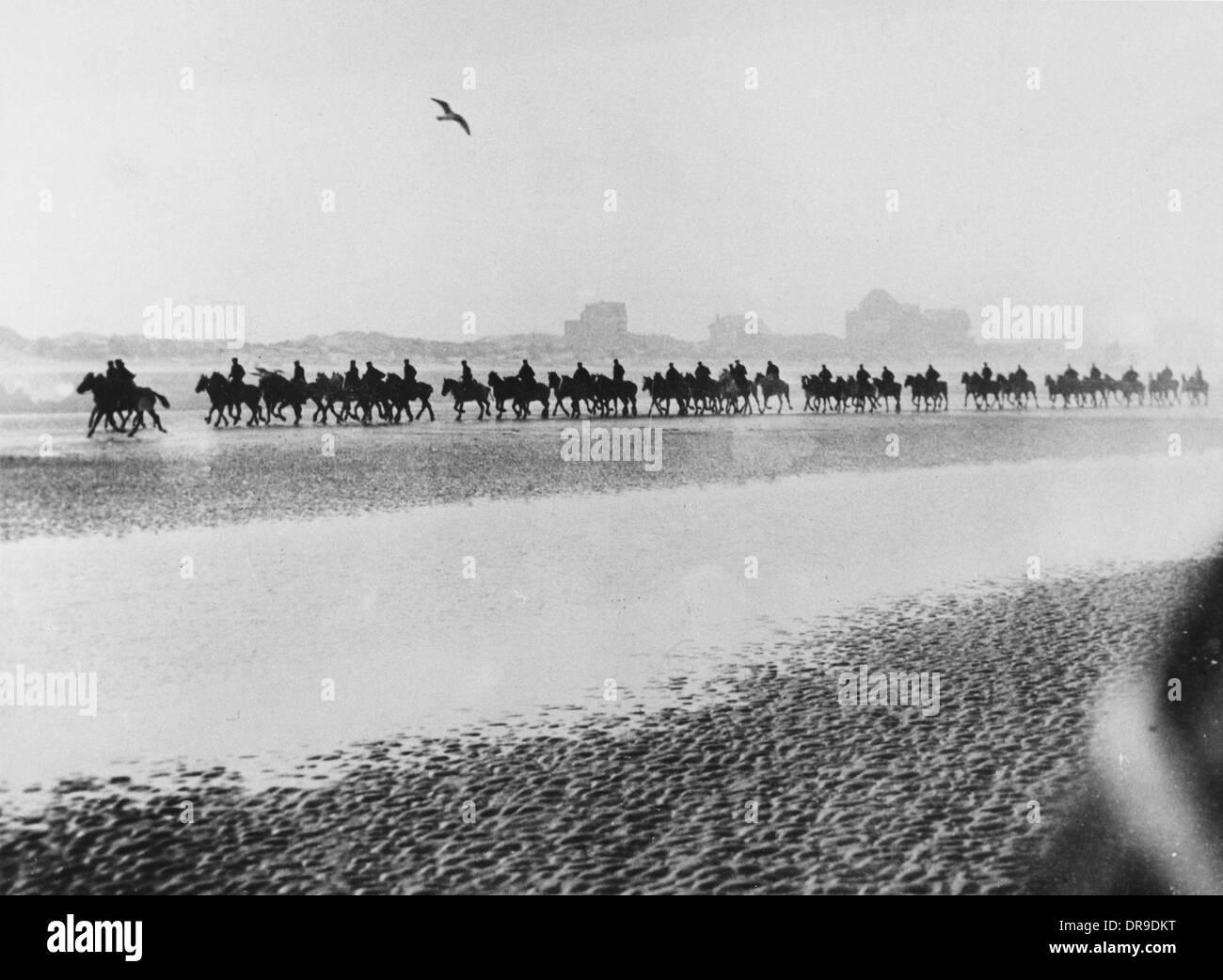 Exercising horses 1916 - Stock Image