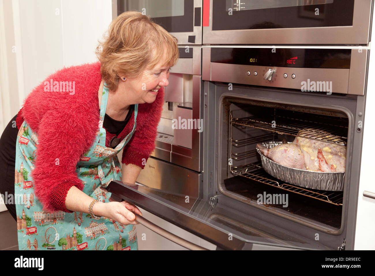 Middle aged caucasian woman putting christmas turkey in the oven for cooking, UK - Stock Image
