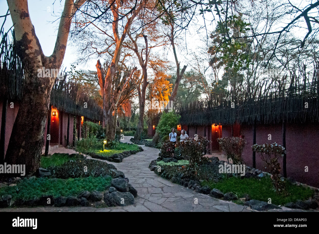 Grounds of Amboseli Serena Lodge in evening with lights Amboseli National Park Kenya East Africa - Stock Image